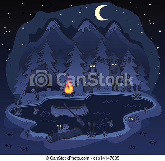 állatok, kempingezés, éjszaka - csp14147635