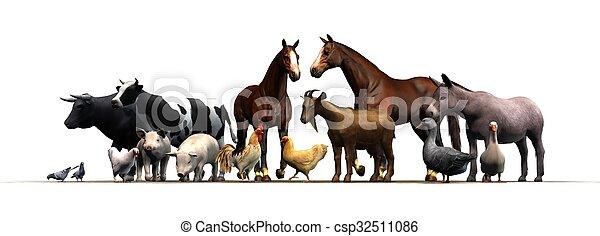 állatok, tanya - csp32511086
