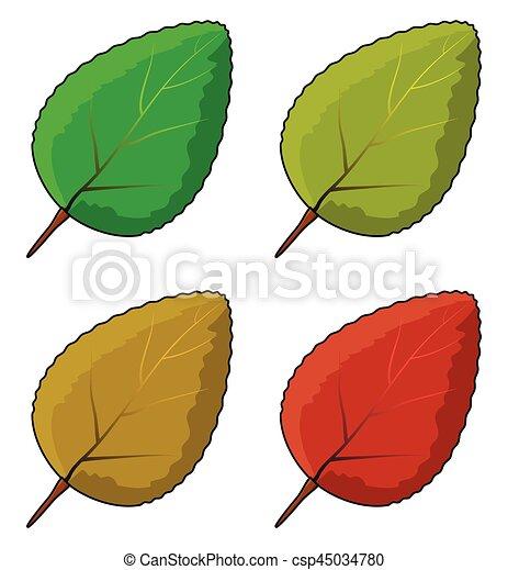 állhatatos, levél növényen, jelkép, vektor, ikon, design. - csp45034780