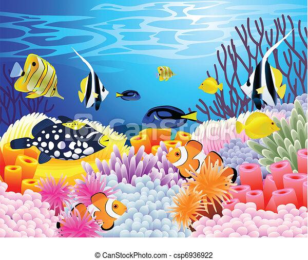 élet, tenger, háttér - csp6936922