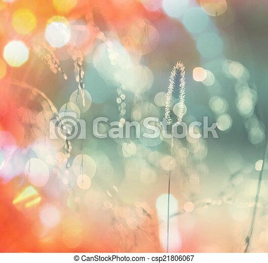 ősz, kaszáló - csp21806067