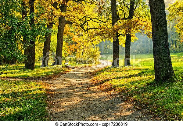 ősz, meleg - csp17238819