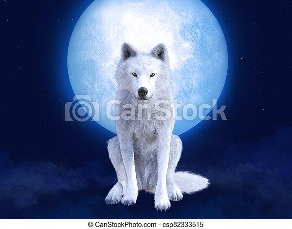 3, vakolás, moonlight., farkas, fehér, méltóságteljes - csp82333515
