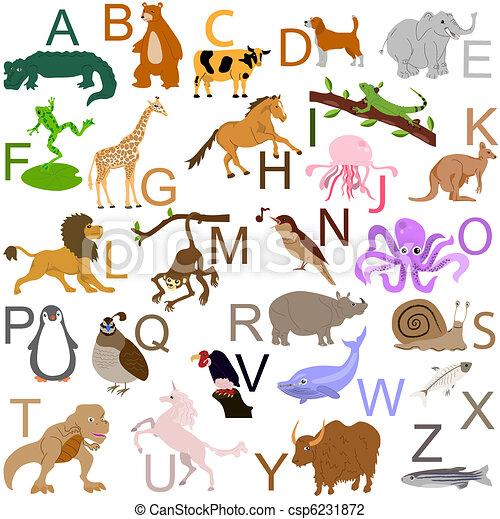 abc, állat - csp6231872