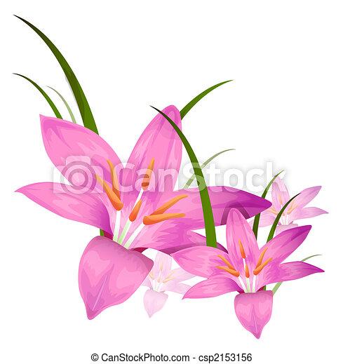 bíbor virág - csp2153156