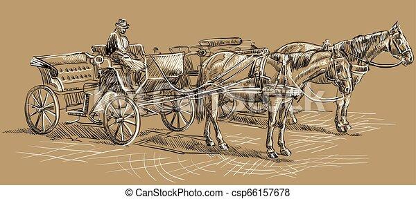 barna ló, carriage2 - csp66157678