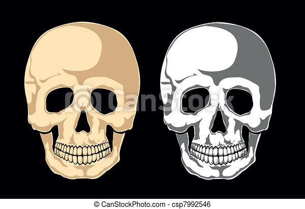 black., laye, emberi koponya, elválaszt - csp7992546