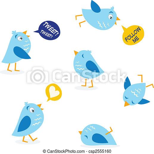 csicsergés, állhatatos, üzenet, madarak - csp2555160