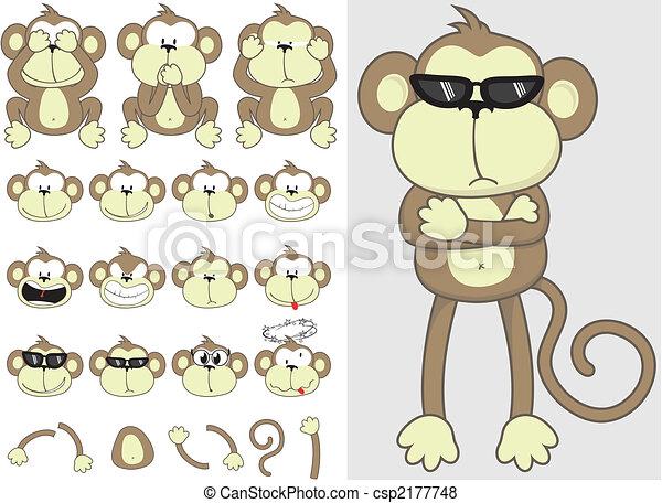 csinos, állhatatos, majom - csp2177748