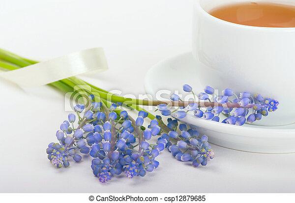csokor, muscari, reggel, tea - csp12879685
