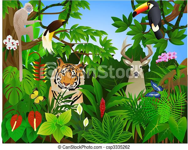 dzsungel, állat - csp3335262