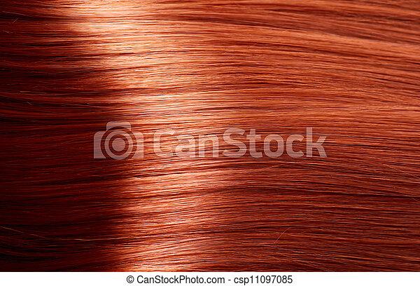 egészséges, barna szőr - csp11097085