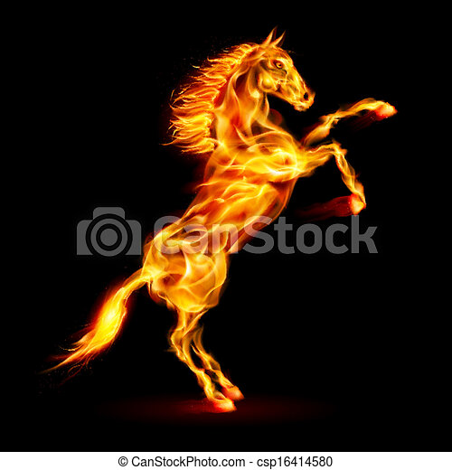 elbocsát, nevelés, ló, feláll. - csp16414580