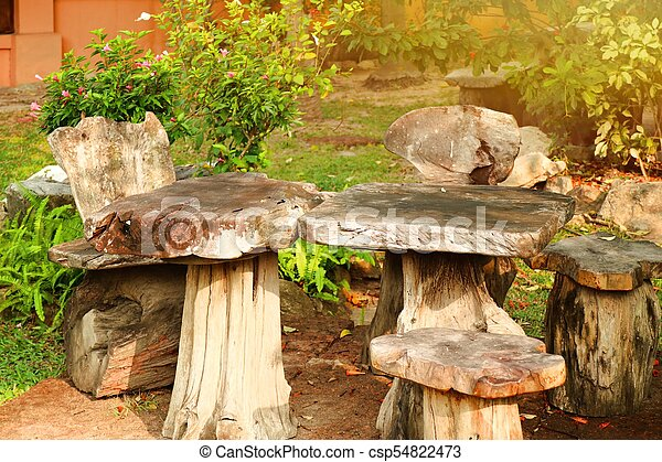 elnökké választ, asztal, erdő - csp54822473