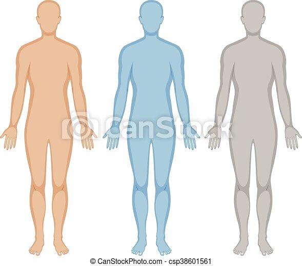 emberi, három, test, befest, áttekintés - csp38601561