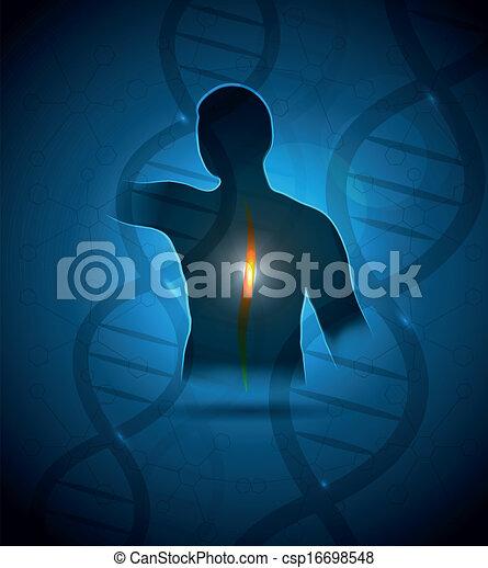 emberi, hátfájás - csp16698548
