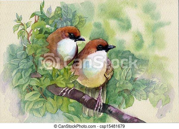 eredet, festmény, madarak, gyűjtés - csp15481679