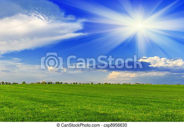 eredet, napos nap - csp8956630