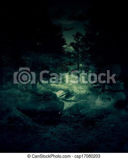 félhomály, erdő - csp17080203