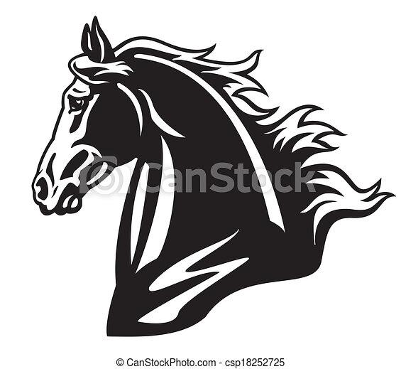 fej, ló, fekete, fehér - csp18252725