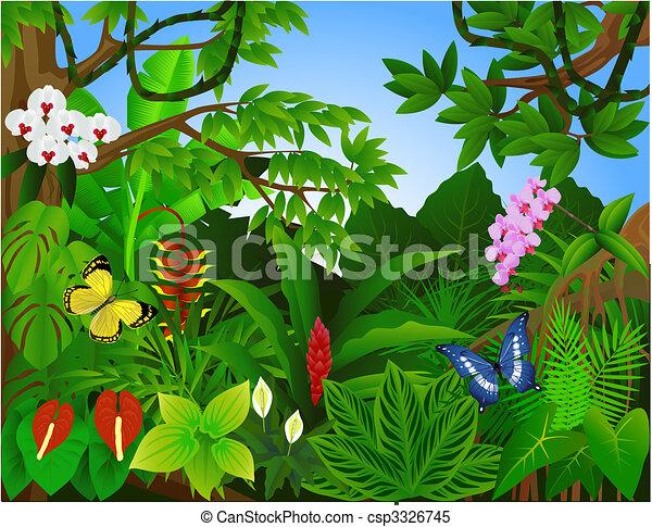 gyönyörű, esőerdő - csp3326745
