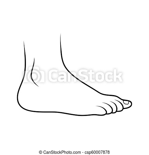 háttér, ikon, elszigetelt, fehér, áttekintés, tervezés, lábfej - csp60007878