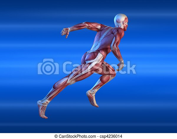 hím, sprinter - csp4236014