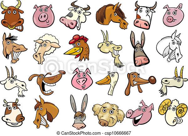 hatalmas, állhatatos, gazdag koncentrátum, major állat, karikatúra - csp10666667