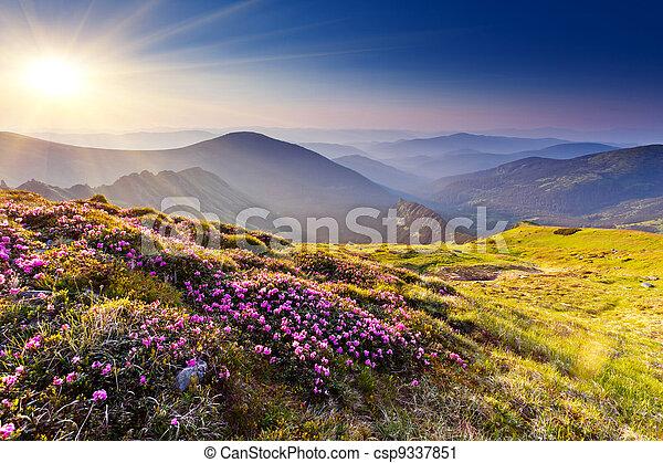 hegy parkosít - csp9337851