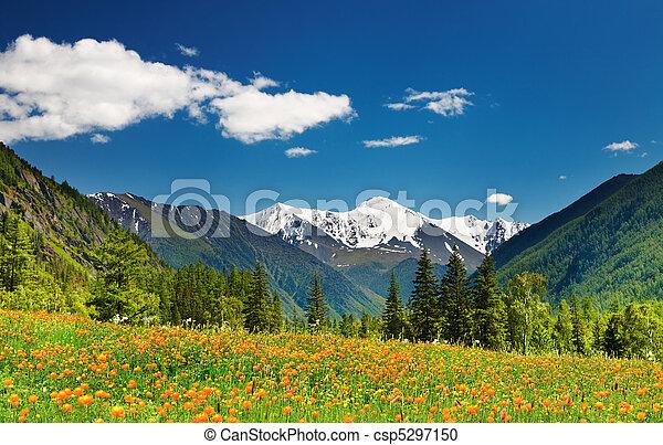 hegy parkosít - csp5297150