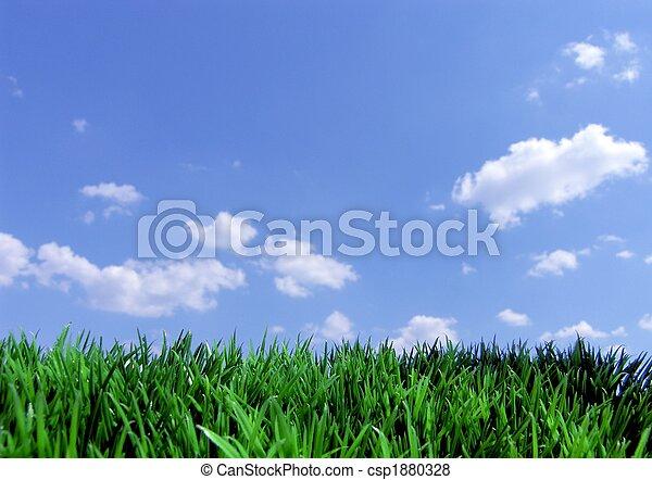 kék ég, fű, zöld - csp1880328