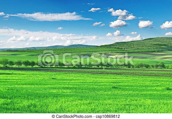 kék ég, mező, hegyek - csp10869812