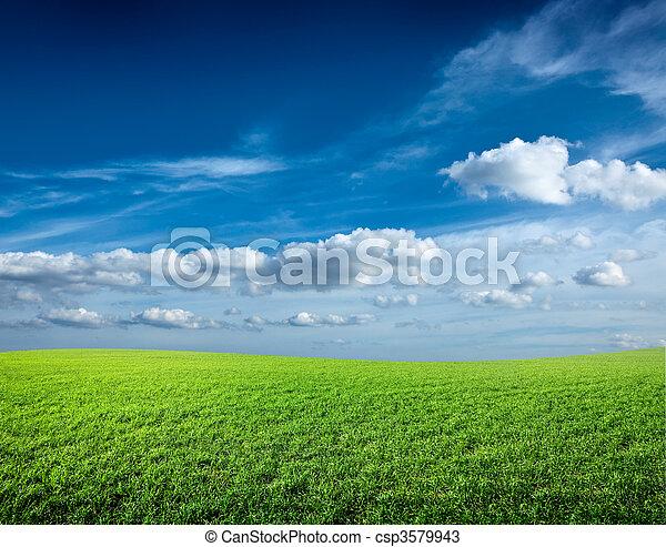 kék ég, mező, zöld, alatt, friss, fű - csp3579943