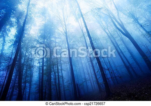 kék, ködös, erdő, félhomály, kedélyállapot - csp21726657