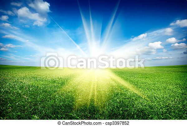 kék, nap, ég, zöld terep, napnyugta, alatt, friss, fű - csp3397852