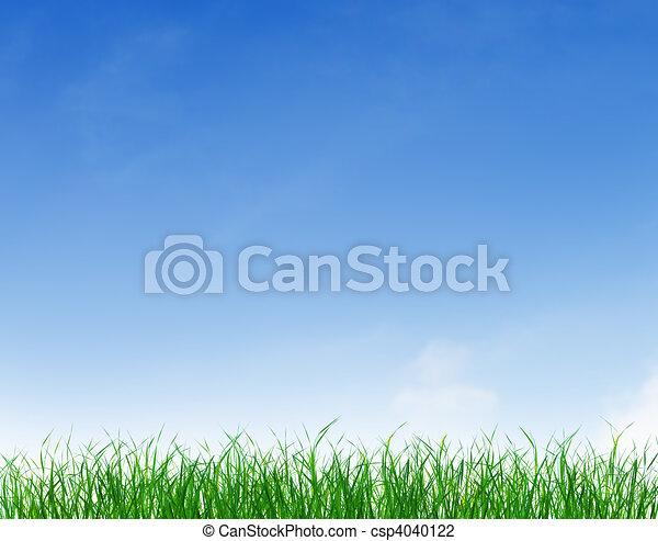 kék, tiszta égbolt, zöld, alatt, fű - csp4040122