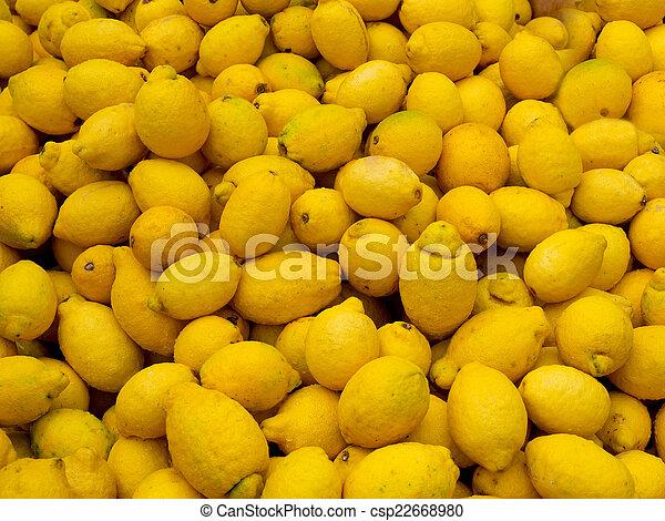 kazal, citromfák - csp22668980