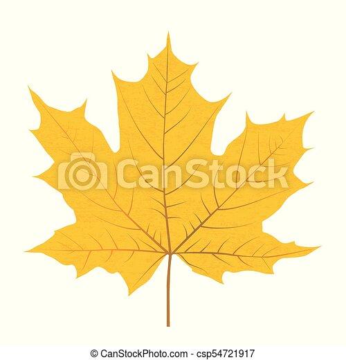 levél növényen, elszigetelt, sárga, ősz, háttér, fehér - csp54721917