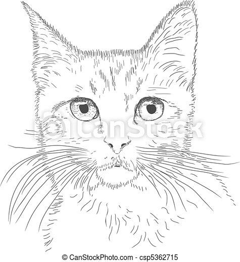 macska, megtölt rajz - csp5362715
