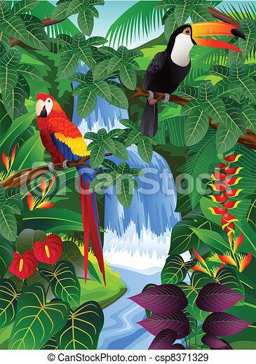 madár, tropikus - csp8371329