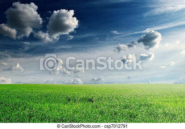 mező, eredet - csp7012791
