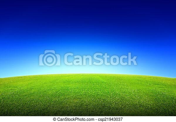 mező fű, ég, zöld - csp21943037