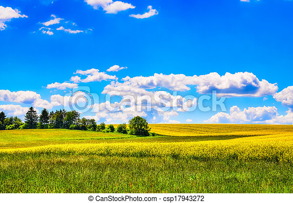 mező, menstruáció, zöld kaszáló, sárga - csp17943272