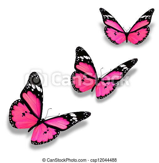 rózsaszínű, fehér, pillangók, három, elszigetelt - csp12044488