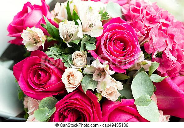 rózsaszín rózsa - csp49435136