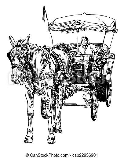 skicc, sofőr, ló, fekete, fehér, rajz - csp22956901