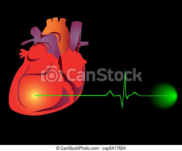 szív, kardiogram - csp5417824