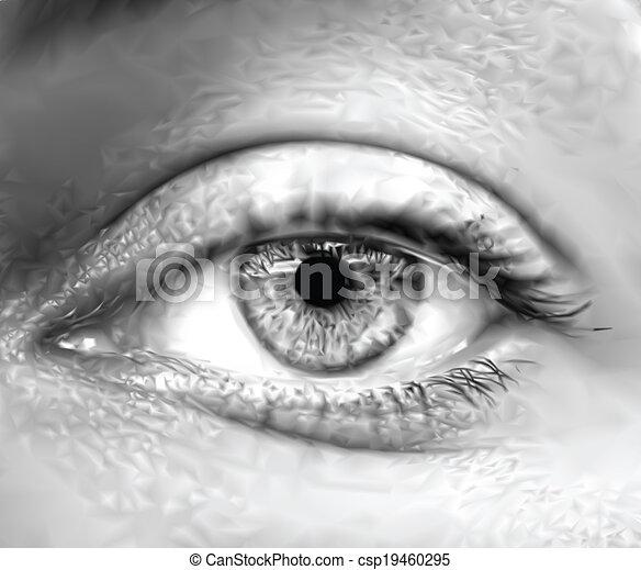 szem, vektor, macro., szürke, női - csp19460295