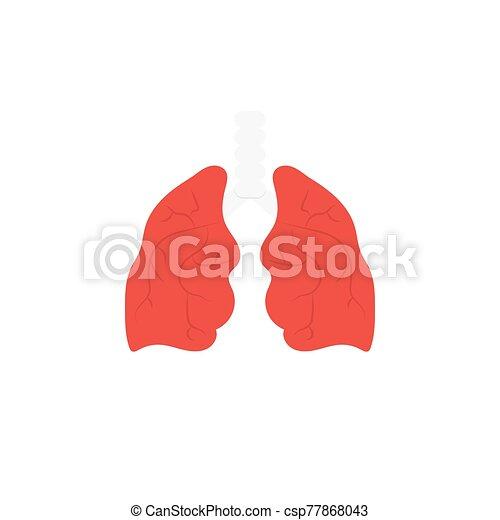 tüdő - csp77868043