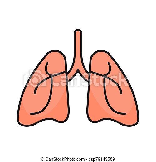 tüdő - csp79143589